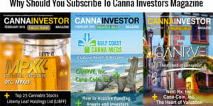 Online Investor Magazine USA